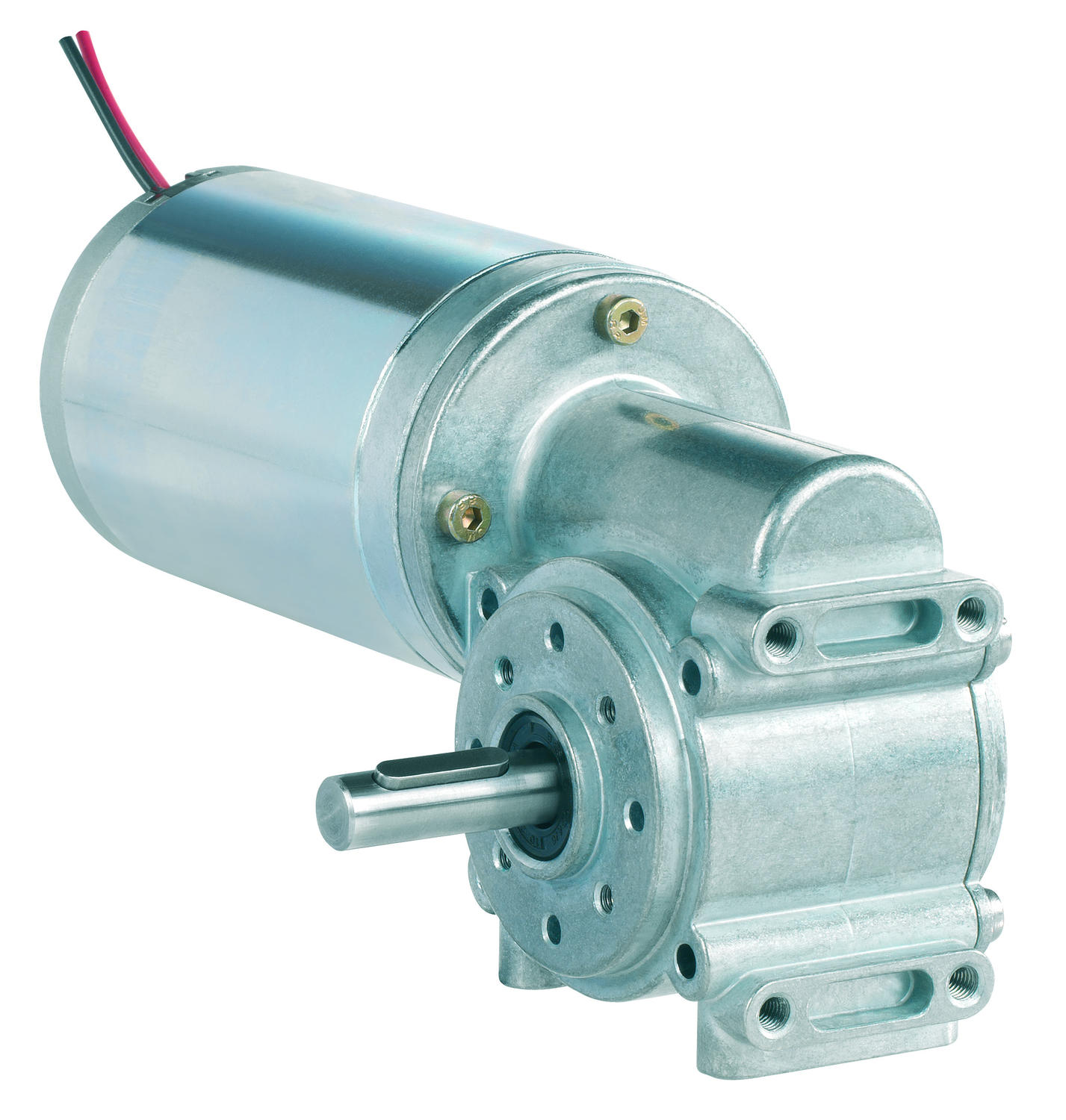80831xxx DC motor with worm gearbox - Industrial DC Series