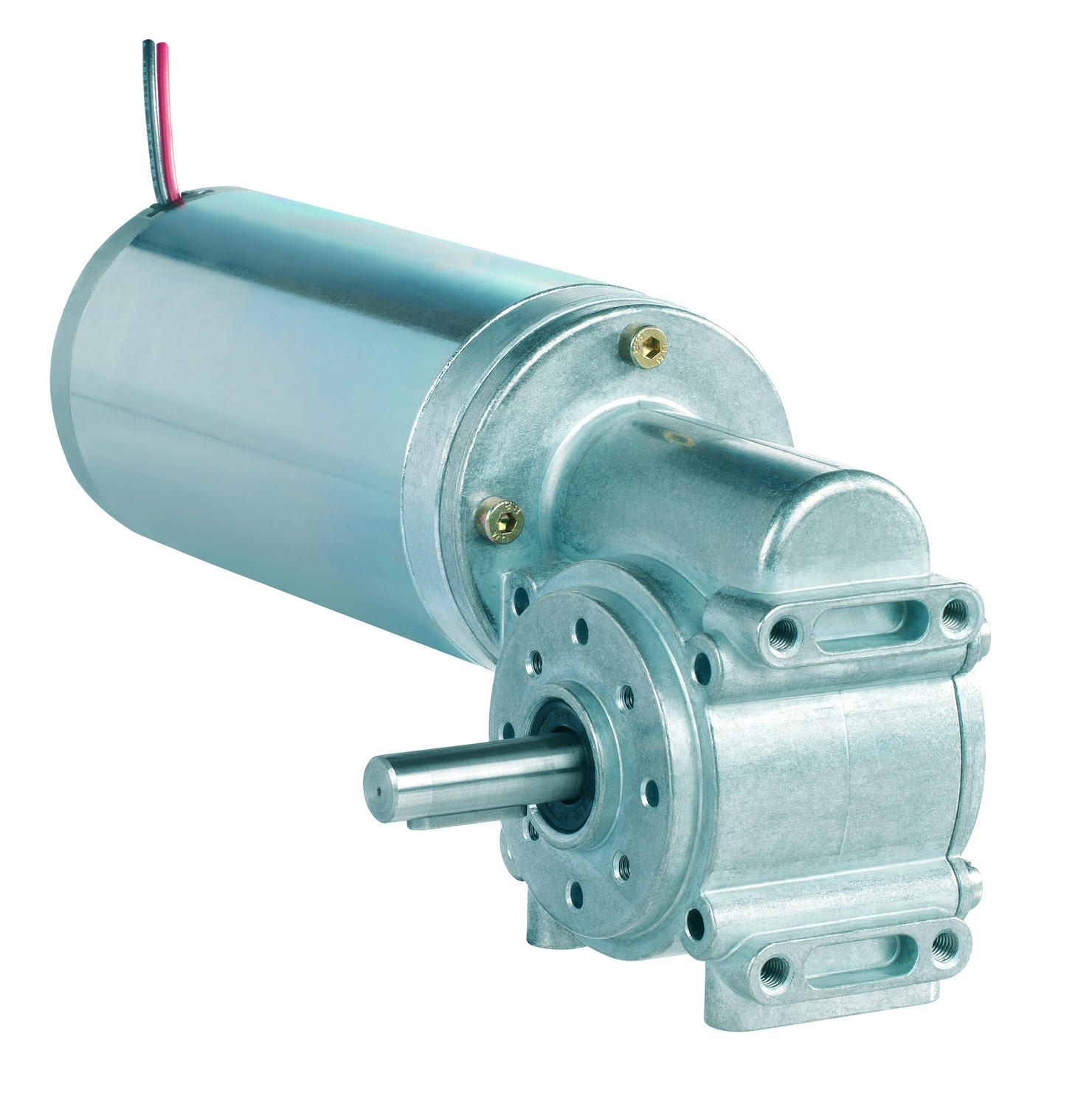 80891xxx DC motor with worm gearbox - Industrial DC Series