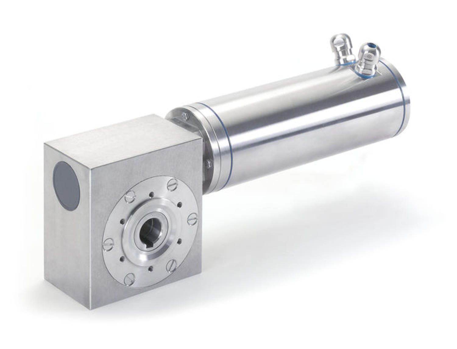 SXCFSS stainless steel worm gear motor